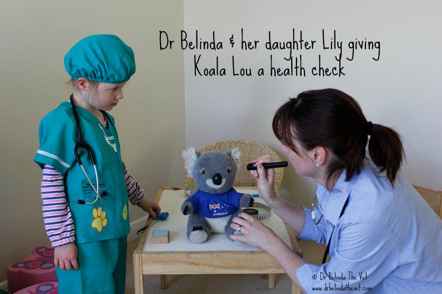 Koala lou check up