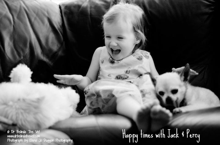 Happy toddler with puppies