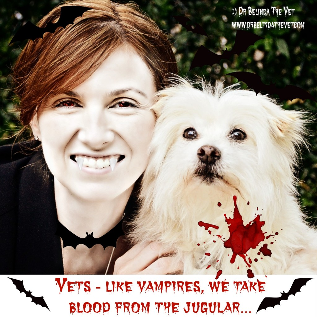 Vampire vets