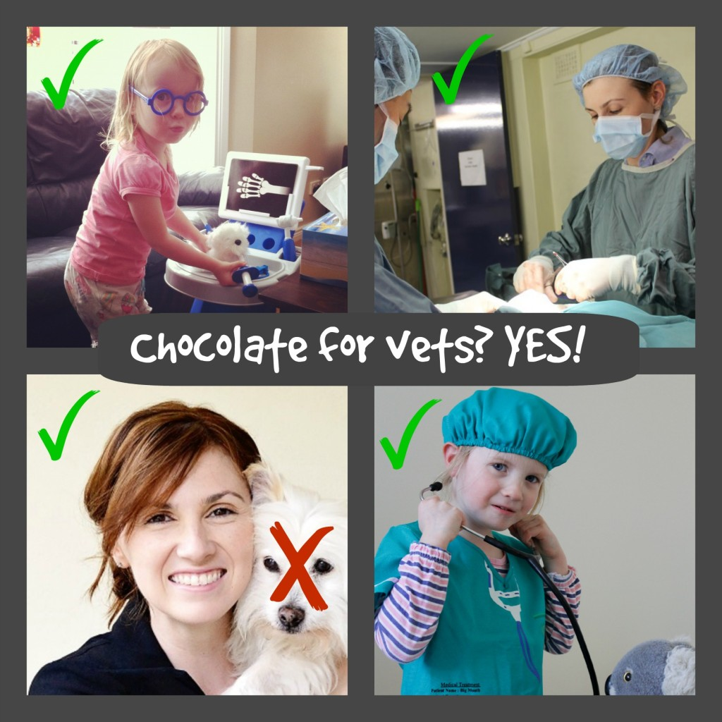 Chocolate is NOT toxic to vets!