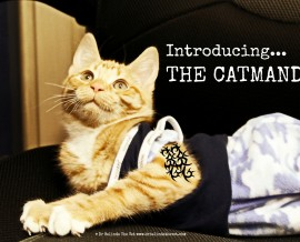 Introducing The CATMANDO!