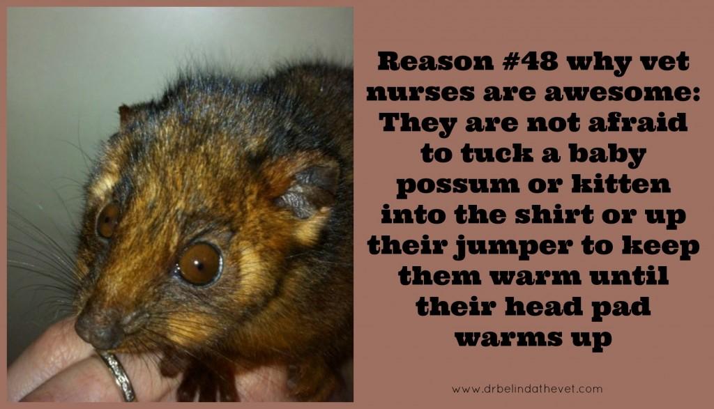 Reason 48