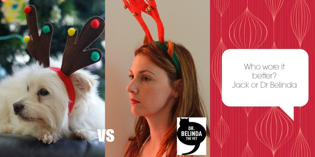 Who wore it better... reindeer ears looking out into the abyss