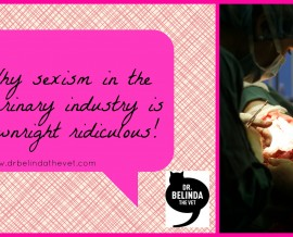 Why sexism in the veterinary industry is downright ridiculous!
