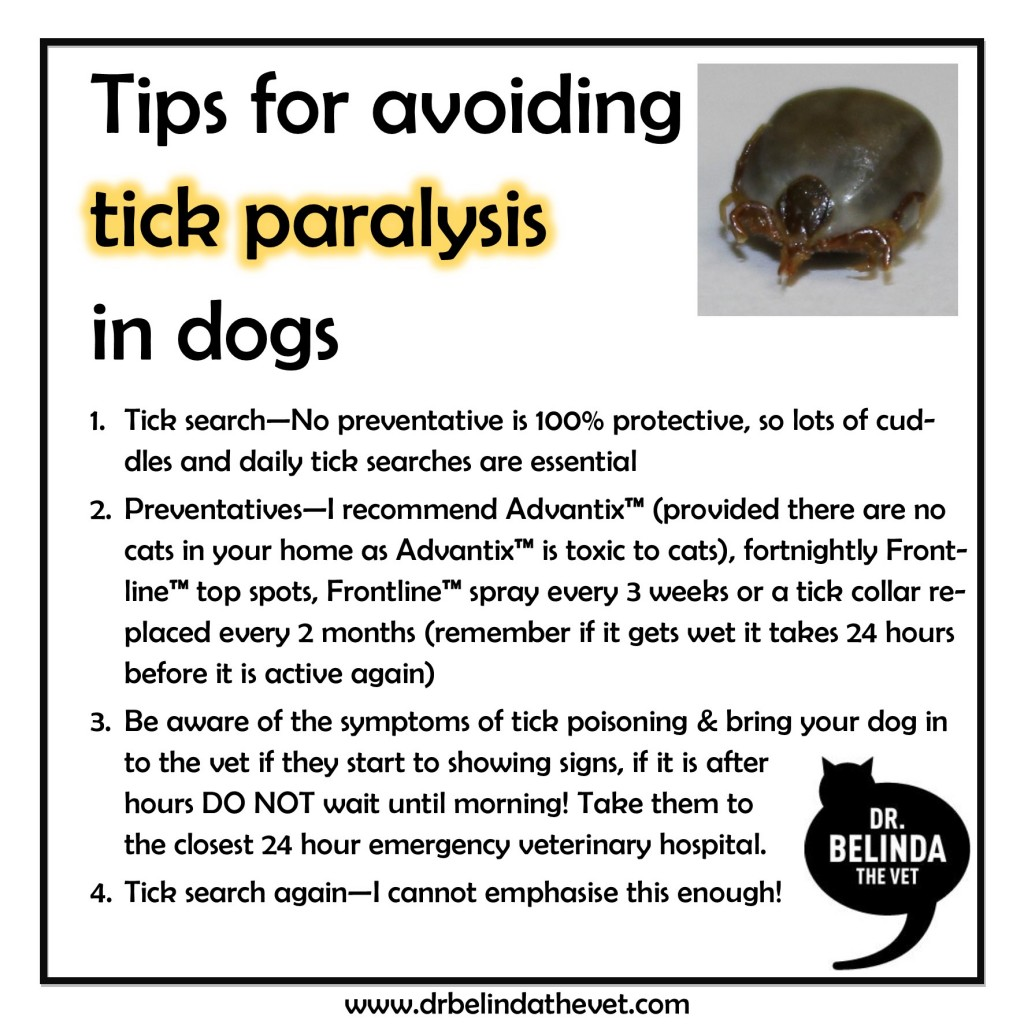 how to kill tick heads.not removed