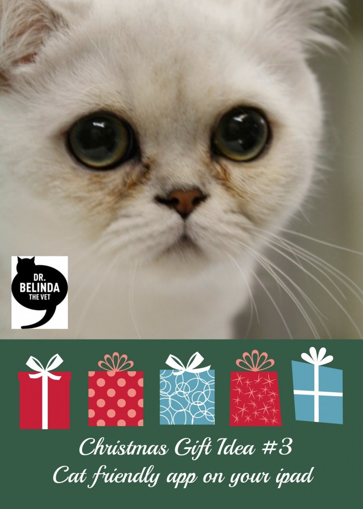 Christmas Gift Idea 3 - Cat friendly app on your ipad
