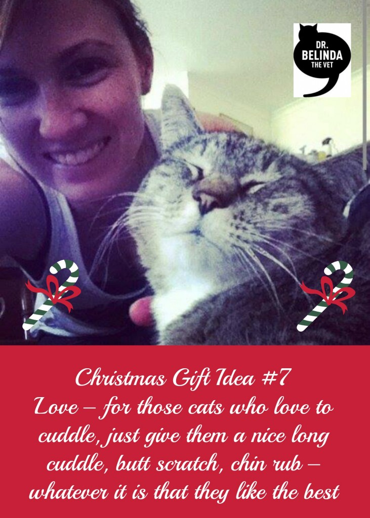 Christmas Gift ideas 7 Love – for those cats who love to cuddle, just give them a nice long cuddle, butt scratch, chin rub – whatever it is that they like the best