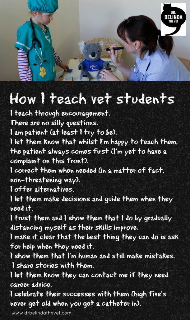 how i teach veterinary students