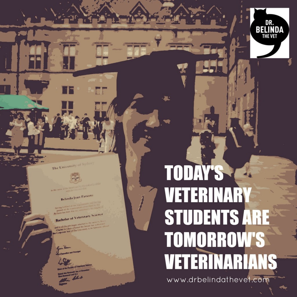 veterinary students 8